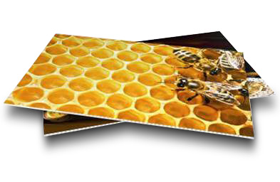 KömaLite ® polypropylene honeycomb panel